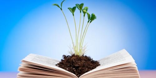Нацпроекты «Наука» и «Образование»: главные ориентиры